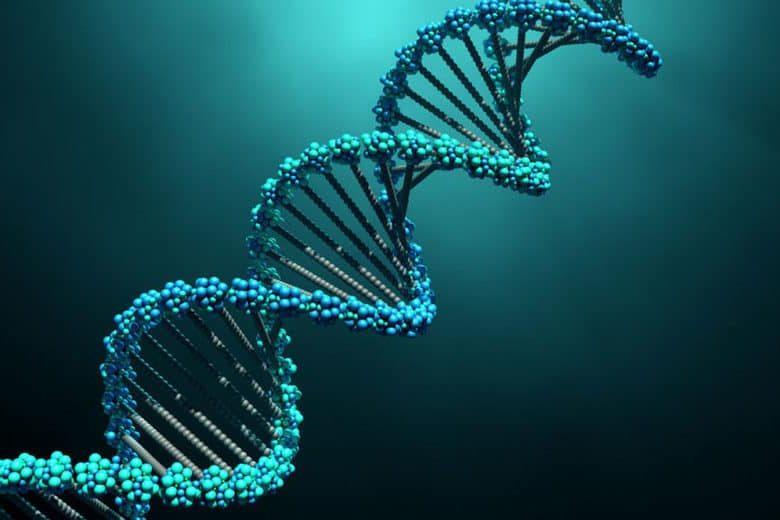 Como achar o DNA da sua marca